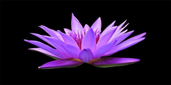 La meditazione del Magghid di Mezeritch per vedere la luce divina in tutte le cose