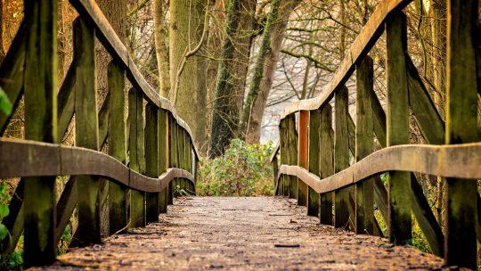 Ghesher tzar meod – La vita è un ponte stretto