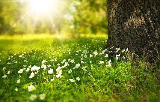 Aumentare la Emunah/fede nella bontà dell'En Sof Infinito, per uscire dal buio nella luce